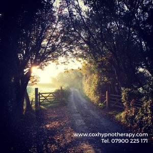 How Autumn shows us to let go Neil Cox Hypnotherapy Cornwall